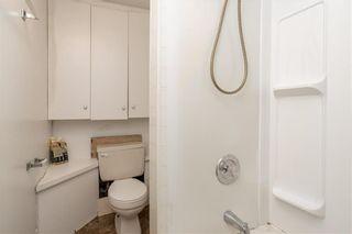 Photo 22: 119 Evanson Street in Winnipeg: Wolseley Residential for sale (5B)  : MLS®# 202021840