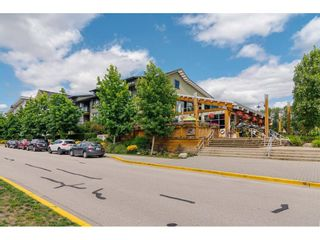 Photo 2: 307 23285 BILLY BROWN Road in Langley: Fort Langley Condo for sale : MLS®# R2459874
