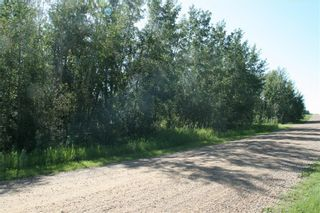 Photo 7: 4 VIEW Place in Rural Stettler No. 6, County of: Rural Stettler County Land for sale : MLS®# A1066068