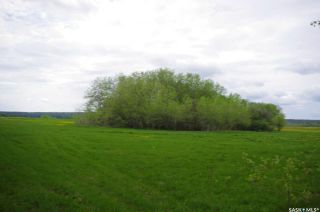 Photo 28: Weiss Lakefront Acreage in Big River: Lot/Land for sale : MLS®# SK834150
