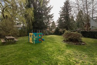 Photo 24: 9164 146A Street in Surrey: Home for sale : MLS®# R2048578