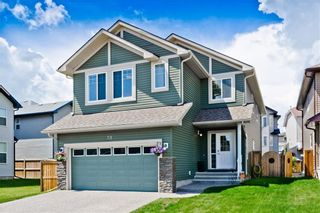 Photo 20: 58 EVERHOLLOW MR SW in Calgary: Evergreen House for sale : MLS®# C4255811