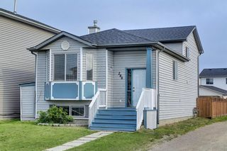 Main Photo: 280 Martin Crossing Way NE in Calgary: Martindale Detached for sale : MLS®# A1132490