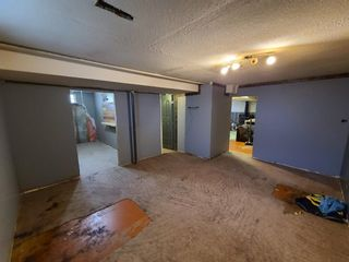Photo 24: 21 THOMAS Drive: Strathmore Detached for sale : MLS®# A1116850