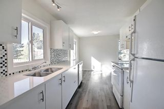Photo 18: 3036 Doverville Crescent SE in Calgary: Dover Semi Detached for sale : MLS®# A1148570