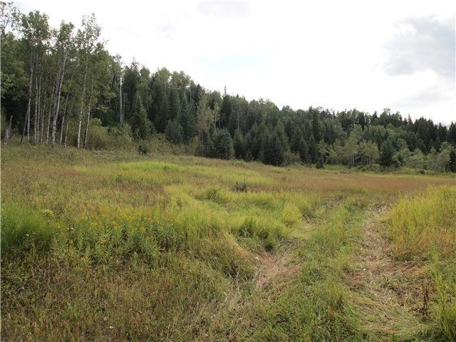 Photo 1: Photos: BISS RD in Canim Lake: Canim/Mahood Lake Land for sale (100 Mile House (Zone 10))  : MLS®# N230019