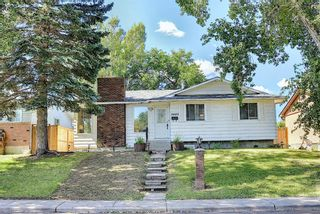 Main Photo: 3403 48 Street NE in Calgary: Whitehorn Detached for sale : MLS®# A1142698