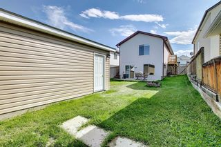 Photo 44: 135 COVEWOOD Close NE in Calgary: Coventry Hills Detached for sale : MLS®# A1023172