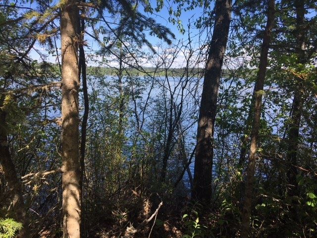 """Photo 2: Photos: 2692 NORWOOD Road in Quesnel: Bouchie Lake House for sale in """"BOUCHIE LAKE"""" (Quesnel (Zone 28))  : MLS®# R2459327"""