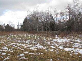 Photo 7: 2127 Highway 236 in Mosherville: 403-Hants County Vacant Land for sale (Annapolis Valley)  : MLS®# 202100967