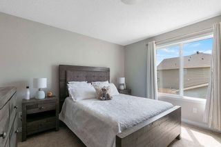 Photo 19: 2566 COUGHLAN Road in Edmonton: Zone 55 House for sale : MLS®# E4247684