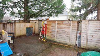 "Photo 18: 25 20653 THORNE Avenue in Maple Ridge: Southwest Maple Ridge Townhouse for sale in ""THORNEBERRY GARDENS"" : MLS®# R2224503"