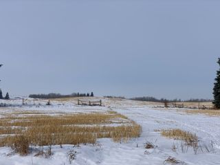 Photo 2: 8686 279 Street: Rural Parkland County House for sale : MLS®# E4227083