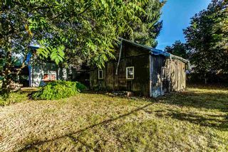 Photo 11: 12301 GREENWELL Street in Maple Ridge: East Central House for sale : MLS®# R2205410