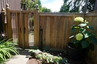 "Photo 56: 11648 HYLAND Drive in Delta: Sunshine Hills Woods House for sale in ""SUNSHINE HILLS"" (N. Delta)  : MLS®# F1417122"