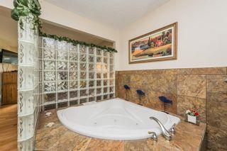 Photo 20: 9132 142 Street in Edmonton: Zone 10 House for sale : MLS®# E4246737