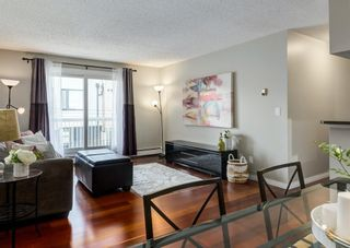 Photo 13: 304 545 18 Avenue SW in Calgary: Cliff Bungalow Apartment for sale : MLS®# A1129205