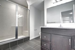 Photo 35: 172 Panamount Manor in Calgary: Panorama Hills Detached for sale : MLS®# A1153994