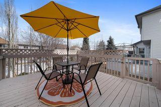 Photo 44: 146 Cranfield Crescent SE in Calgary: Cranston Detached for sale : MLS®# A1095687