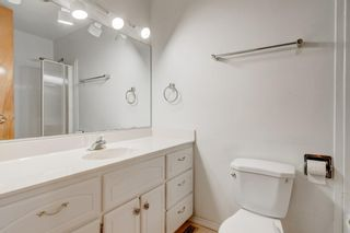 Photo 23: 3432 LANE CR SW in Calgary: Lakeview House for sale : MLS®# C4279817