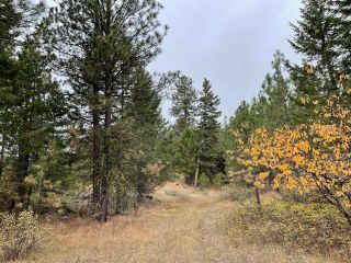 Photo 4: 490 WAPITI Way, in Osoyoos: Vacant Land for sale : MLS®# 191574