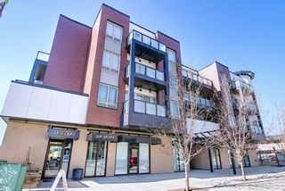 Photo 22: 206 1899 45 Street NW in Calgary: Montgomery Apartment for sale : MLS®# A1095005