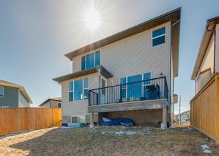 Photo 43: 102 Bayview Street SW: Airdrie Detached for sale : MLS®# A1088246