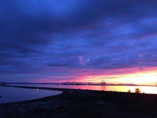"Photo 38: 415 1120 TSATSU SHORES Drive in Tsawwassen: Tsawwassen North Condo for sale in ""Tsatsu Shores"" : MLS®# R2591488"