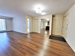 Photo 14: 438 6076 SCHONSEE Way in Edmonton: Zone 28 Condo for sale : MLS®# E4260047