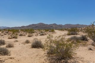 Photo 25: 67326 Whitmore Road in 29 Palms: Residential for sale (DC711 - Copper Mountain East)  : MLS®# OC21171254