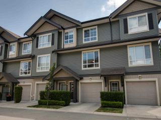 """Photo 1: 53 4967 220 Street in Langley: Murrayville Townhouse for sale in """"WINCHESTER ESTATES"""" : MLS®# R2383296"""
