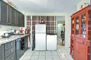 Photo 14: 10933 150 Street in Edmonton: Zone 21 House for sale : MLS®# E4251858