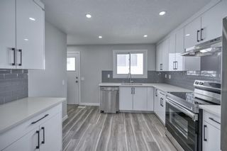 Photo 5: 39 Aberdare Road NE in Calgary: Abbeydale Detached for sale : MLS®# A1127004
