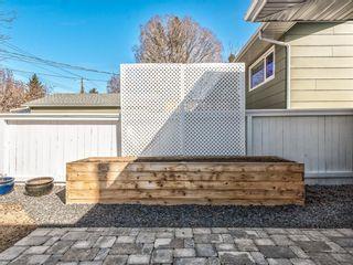 Photo 42: 10811 Maplebend Drive SE in Calgary: Maple Ridge Detached for sale : MLS®# A1115294