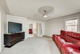 Photo 37: 265 Coral Shores Cape NE in Calgary: Coral Springs Detached for sale : MLS®# A1145653