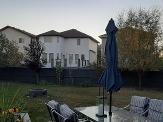 Photo 4: 20351 46 Avenue NW in Edmonton: Zone 58 House for sale : MLS®# E4219468