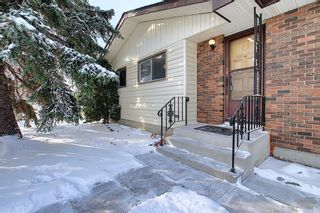 Photo 3: 4323 49 Street NE in Calgary: Whitehorn Detached for sale : MLS®# A1043612