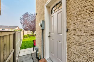 Photo 34: 173 Martinglen Way NE in Calgary: Martindale Detached for sale : MLS®# A1144697