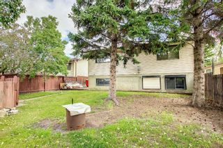 Photo 41: 1195 Ranchlands Boulevard NW in Calgary: Ranchlands Detached for sale : MLS®# A1142867