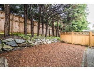 "Photo 33: 38 2865 GLEN Drive in Coquitlam: Eagle Ridge CQ House for sale in ""BOSTON MEADOWS"" : MLS®# R2556554"