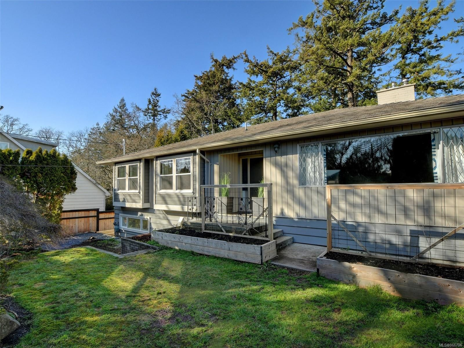 Main Photo: 1116 Nicholson St in : SE Lake Hill House for sale (Saanich East)  : MLS®# 866706