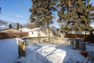Photo 22: 903 Campbell Street in Winnipeg: River Heights South Residential for sale (1D)  : MLS®# 202102438