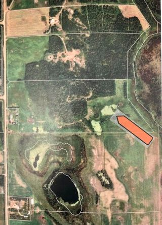 Photo 16: Rge Rd 231 North of Twp Rd 564: Rural Sturgeon County Rural Land/Vacant Lot for sale : MLS®# E4262842