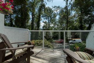 Photo 14: 531 SAN REMO Drive in Port Moody: North Shore Pt Moody House for sale : MLS®# R2090867