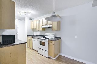 Photo 6: 504 1240 12 Avenue SW in Calgary: Beltline Apartment for sale : MLS®# A1093154