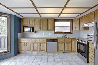 Photo 16: 1328 48 Avenue NW in Calgary: North Haven Detached for sale : MLS®# A1103760