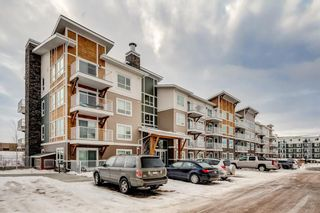 Photo 1: #7312 302 SKYVIEW RANCH DR NE in Calgary: Skyview Ranch Condo for sale : MLS®# C4186747