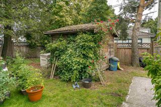 Photo 34: 494 E 18TH AVENUE in Vancouver: Fraser VE House for sale (Vancouver East)  : MLS®# R2469341