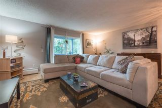 """Photo 4: 316 204 WESTHILL Place in Port Moody: College Park PM Condo for sale in """"WESTHILL PLACE"""" : MLS®# R2356419"""