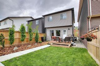 Photo 45: 139 Howse Lane NE in Calgary: Livingston Detached for sale : MLS®# A1118949